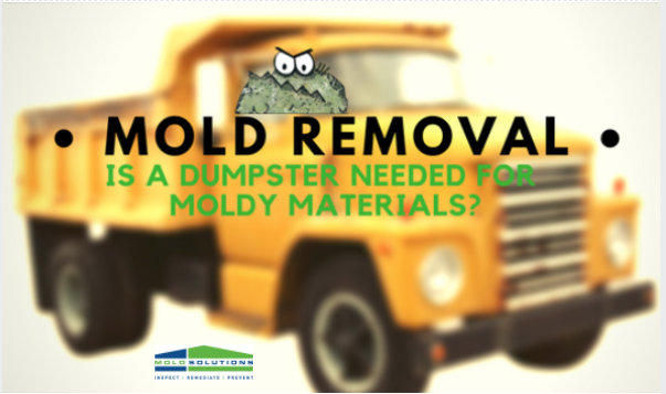 Mold Removal Dumpster