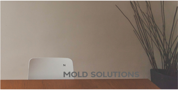 Can I Use Bleach for Mold Removal?