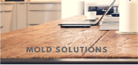 Mold Prevention at Home