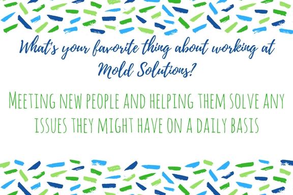 Best Thing Mold Solutions