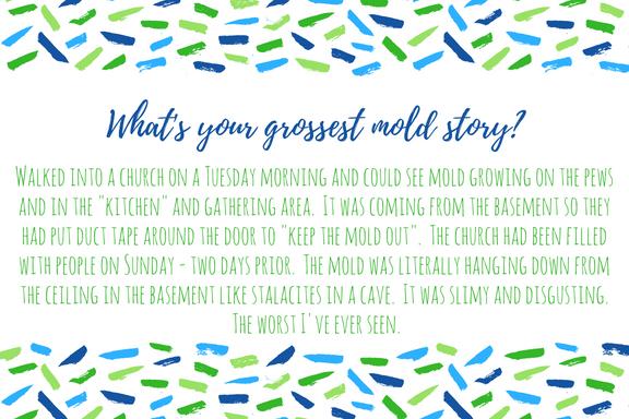 Grossest Mold Story