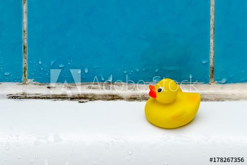 Mold in bath tub with duckie